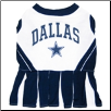 Dallas Cowboys Cheerleader Dog Dress
