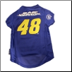 Jimmie Johnson Jersey