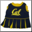 California Berkeley Cheerleader Dog Dress