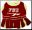 Florida State University Cheerleader Dog Dress
