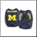 Michigan Wolverines Jersey- Alternate