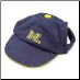 Michigan Wolverines Ball Cap