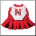 Nebraska Huskers Cheerleader Dog Dress