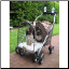 Kittywalk Royale Stroller
