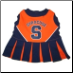 Syracuse University Cheerleader Dog Dress