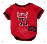 Arkansas Razorbacks Mesh Jersey