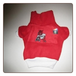 Arkansas Razorbacks Fleece Pullover
